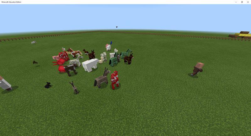Zoo - Challenge 1