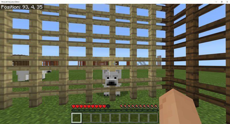 polar bears protective cage