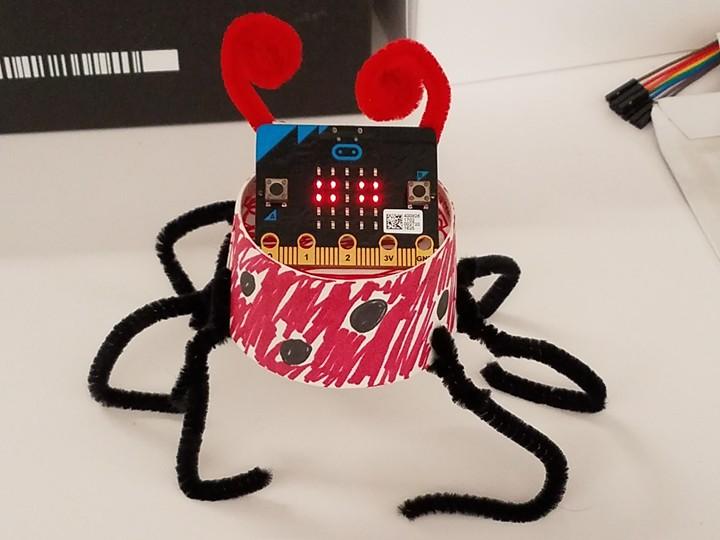 A ladybug micro:pet